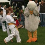 karate-duck-kids-web