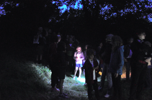 The 2016 Bat Walk